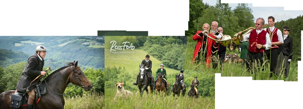 RossFoto Dana Krimmling; Schleppjagd Cappenberger Meute; Pferdefotografie; wanderreiten; westernreiten; jagdreiten; Jagdpferd; Westerwald; Hundemeute; Jagdhunde, Equipage