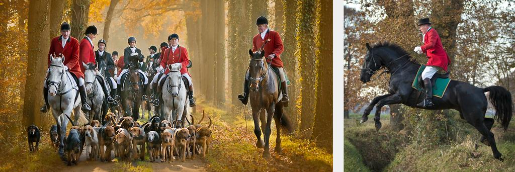 rossfoto, dana krimmling, pferdefotografie, westernreiten, wanderreiten, kavalleriereiten, reiten, jagdreiten, rote jagd, schleppjagd, winterswijk, meute, hundemeute