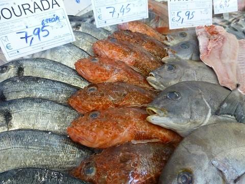 auf dem Fisch Markt in Portugal