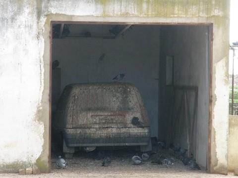 angeschissen!      Eher ungewöhnlicher Taubenschlag - Mercedes stand draußen
