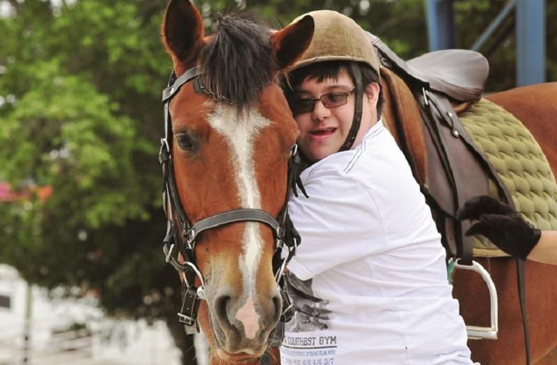 El caballo como terapeuta.