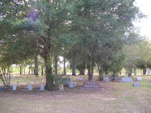Graves on the west side, Colliers Chapel Cemetery, Sept. 2011