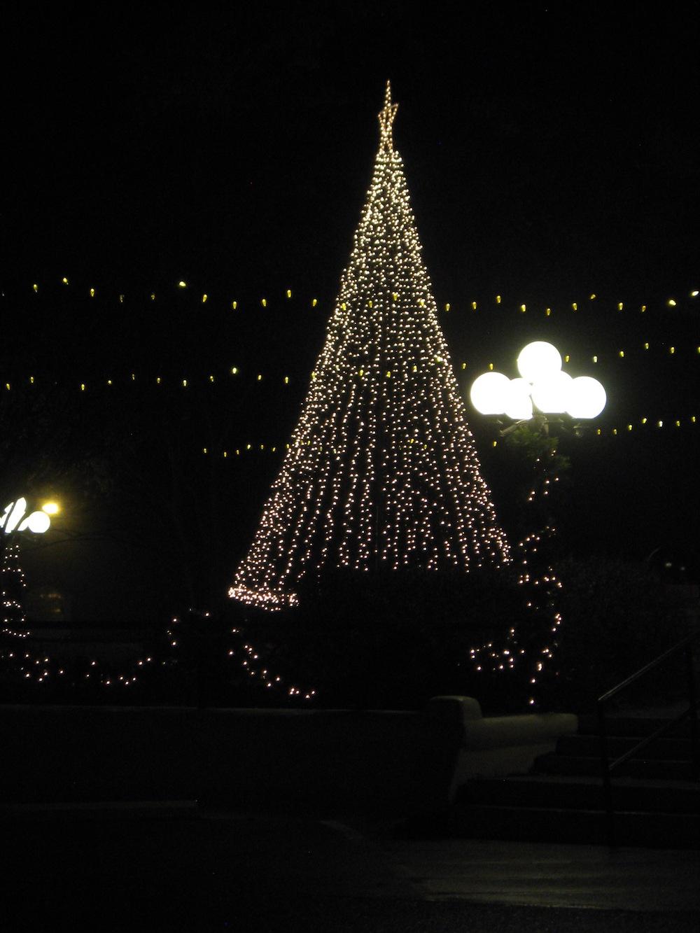 Christmas tree and lights, Mt. Vernon Plaza, Dec. 2017