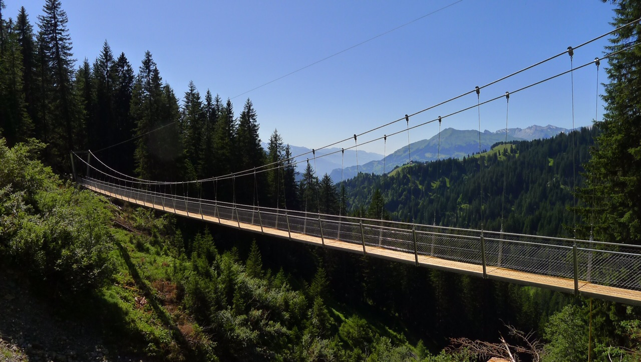 Hängebrücke Grüschertobel