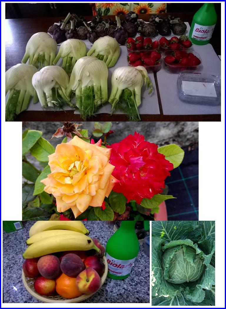 Aumentare La Produttività Di Ortaggi, Frutta, Verdura..... Con #AcquaBase