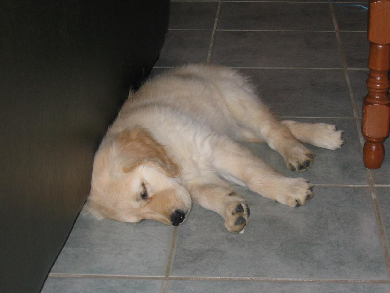 Hidjie, un sommeil réparateur