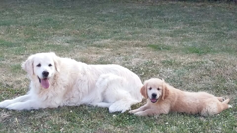 Newton et sa maman d'adoption Vickie 2