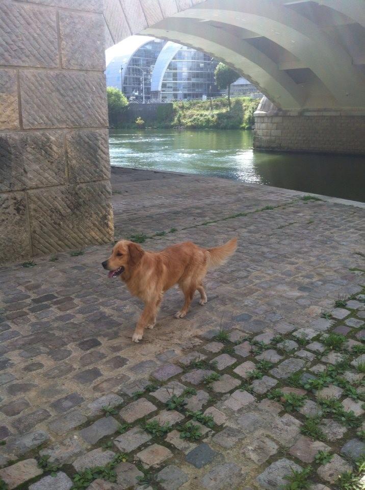 Huggy, sous les ponts