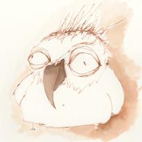 Lenia Friedrich 100 Wege einen Vogel zu zeichnen