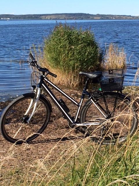 Ein Trekkingrad mit allen Schikanen.