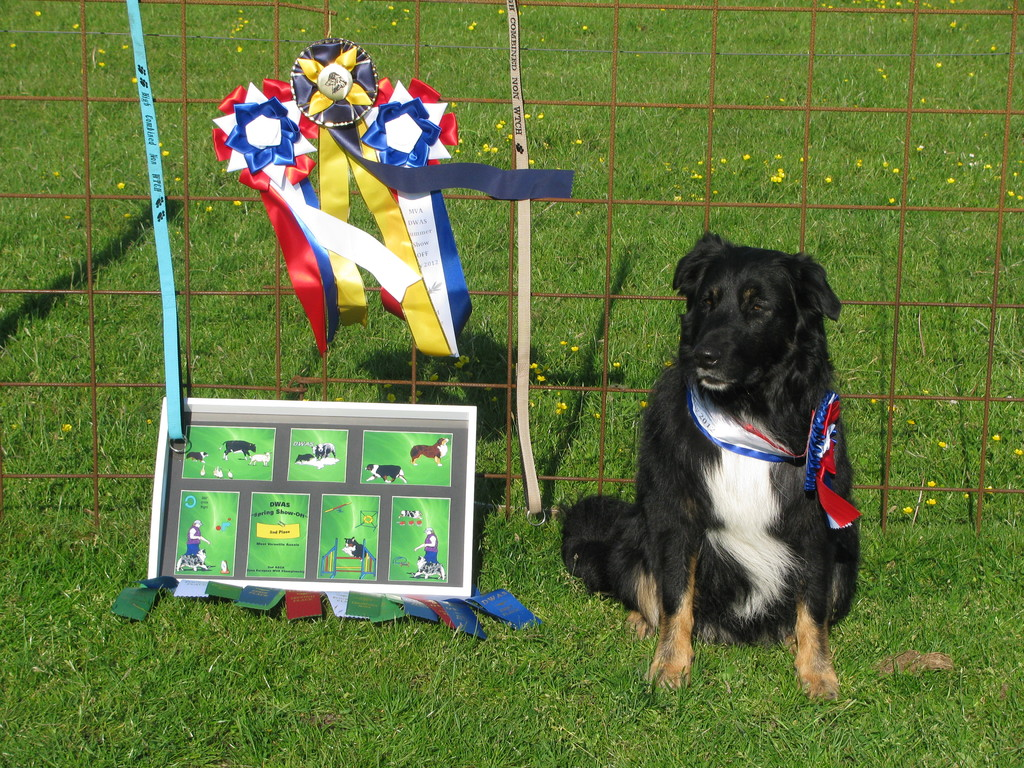Spencer mit einem Teil seiner MVA-Preise