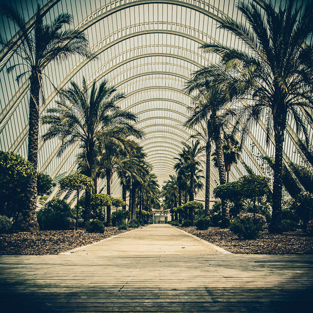 L'umbracle #02, Valencia 2012