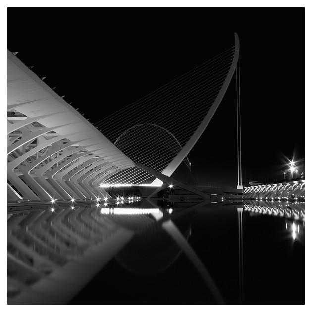 Ciudad de las Artes y las Ciencias #02, Valencia 2011