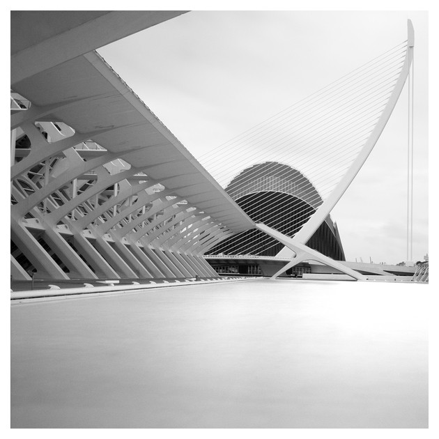 Ciudad de las Artes y las Ciencias #01, Valencia 2011