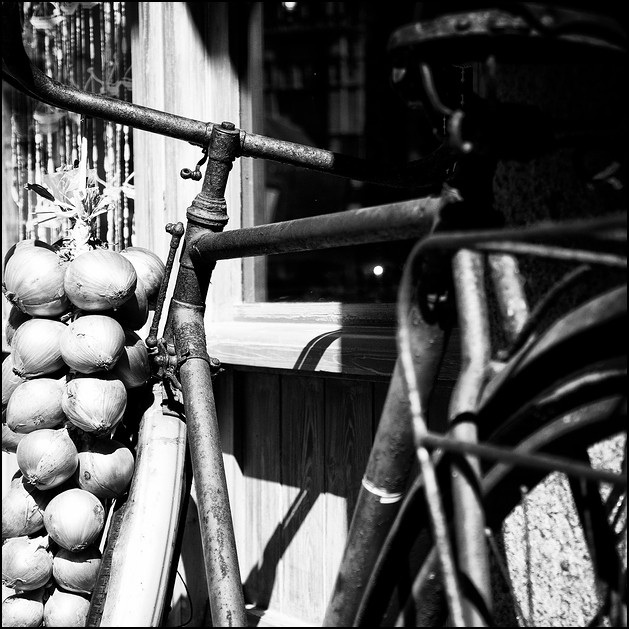 Onions on a bike, Roscoff 2010