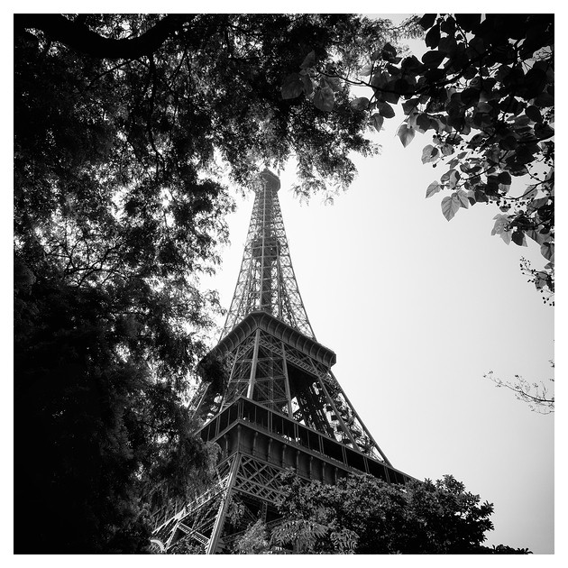 tour eiffel, Paris 2009