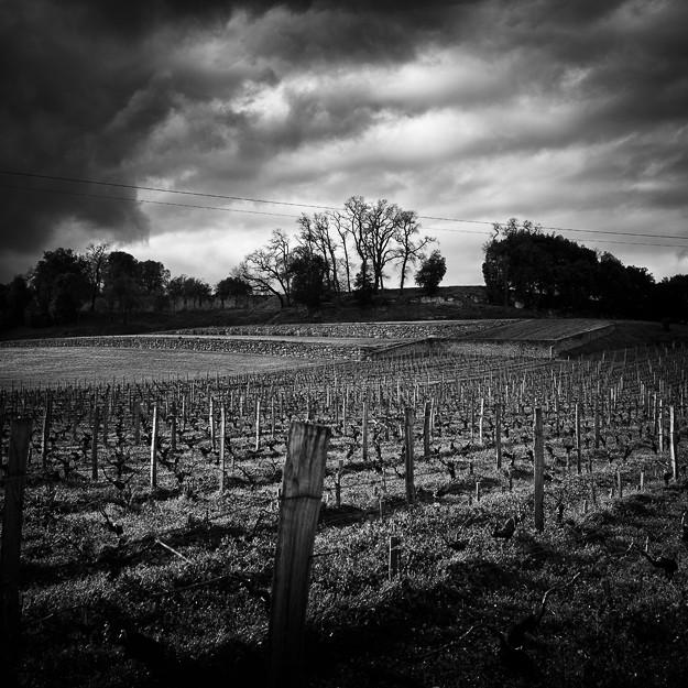Saint-Émilion & vignes #02. Aquitaine, France 2013