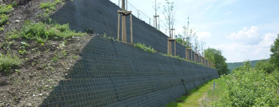 KBE Grün G kurz nach Fertigstellung und der Bepflanzung mit Kletterpflanzen