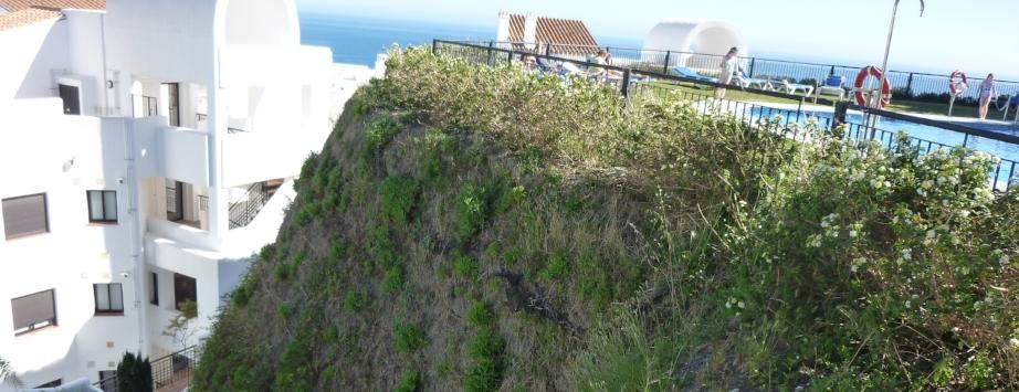erschwerte Bedingungen in Andalusien: gelungene Begrünung mit Bewässerung