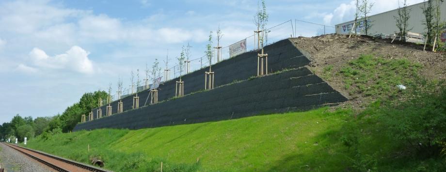 BV: Vetter in Burbach, kurz nach der Bepflanzung 2018 (KBE Grün G)