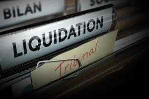 Conseils & Assistance en  Liquidation judiciaire