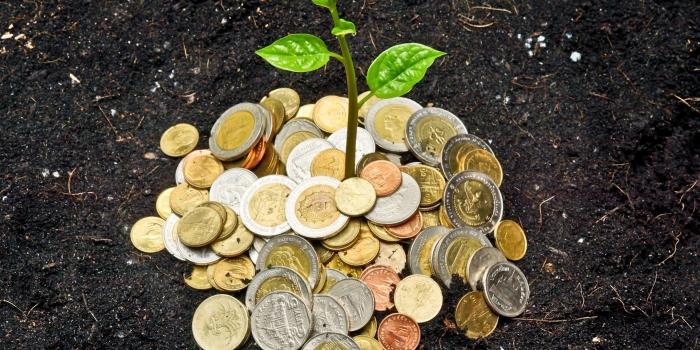 l'île Maurice et la protection des investissements étrangers (APIE), les traités internationaux à l'île Maurice ( IPPA), traitement accordé aux investisseurs étrangers et à leurs investissements (IPPA)