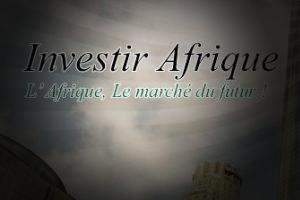 Conseils en investissements en Afrique via Maurice