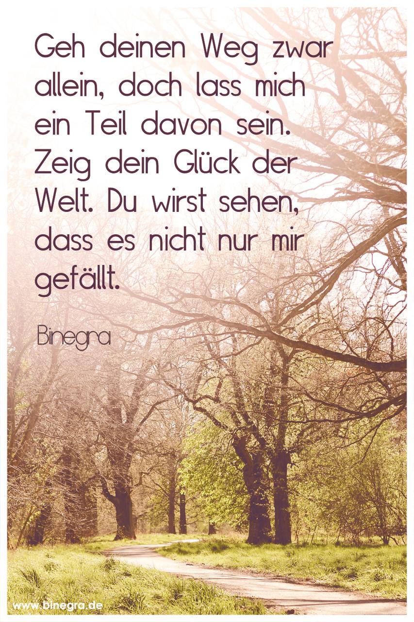 """Aus meinem Song """"Geh allein"""""""