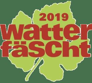 Rundflugtage Watterfäscht 2019