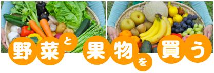 野菜 果物 通販 宅配