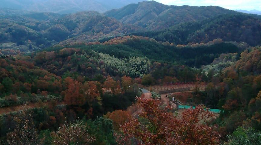 紅葉を迎えた山々