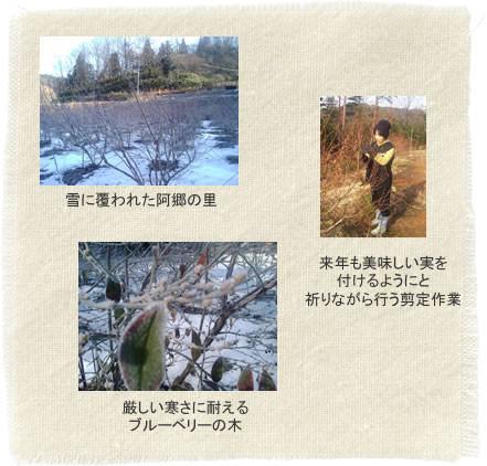 阿郷の里の四季~冬
