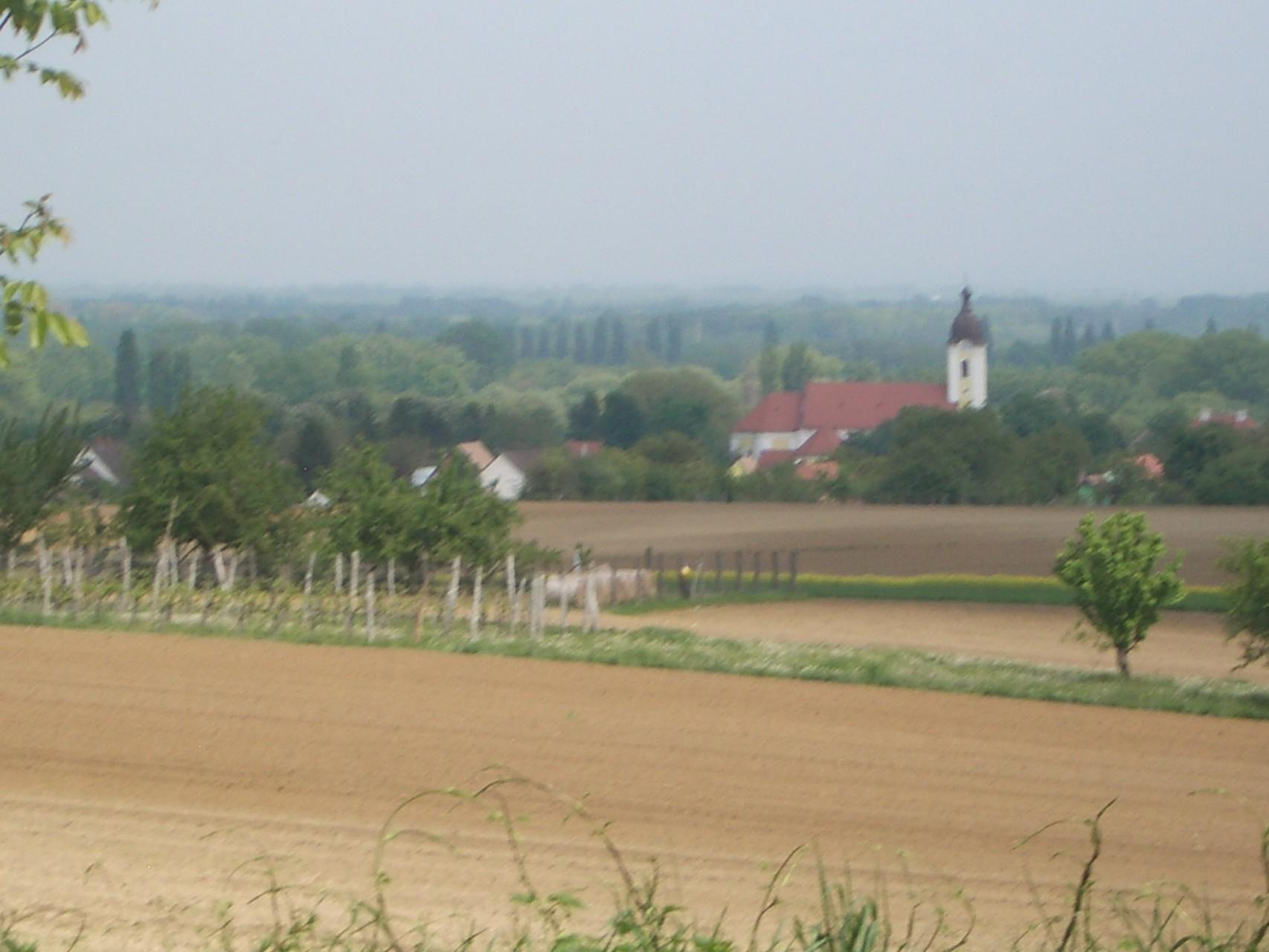Blick auf Kesthely und das Nagy Berek