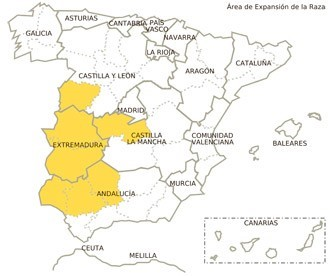 Jiménez 100% Iberico Pata Negra