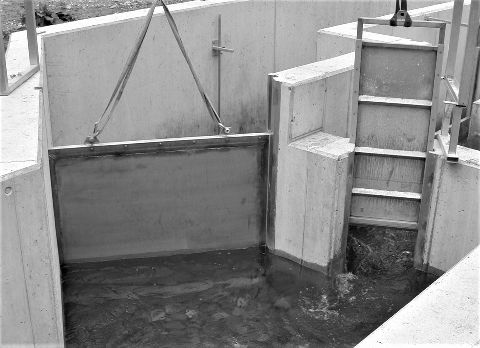 Stahlwasserbaukomponenten, Fischaufstieg und Fischabstieg - Stahlwasserbau