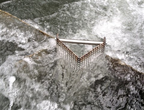 In bestehender Fischtreppe ohne Zählbecken ein Monitoring durchführen