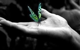 Etape 3 : la transformation grâce aux rêves