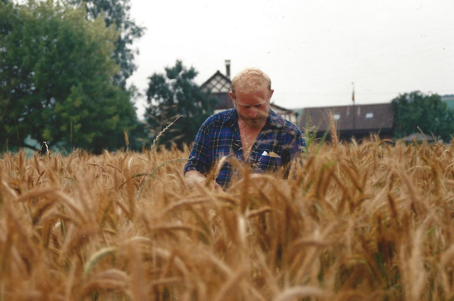 Hans in seinen jungen Jahren im Getreidefeld