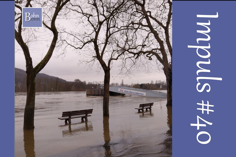 #40 - Wie schütze ich mich vor der Krisen-Flut?