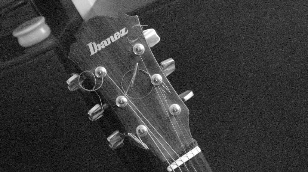 paletta chitarra acustica