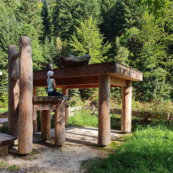 Wandern auf dem Erkinger-Weg in Bad Liebenzell - Abenteuerreise für Groß und Klein mit besonderen Highlights - HVP178