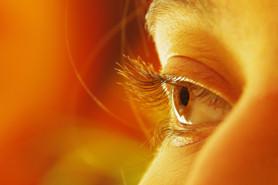 vision oeil