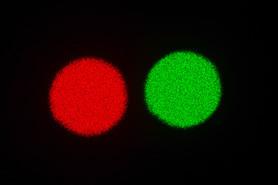 Lumière rouge et verte