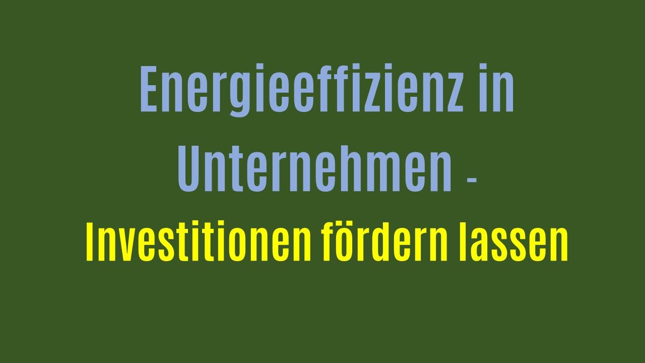 Energieeffizienz wird gefördert – Unternehmen stellen Fördermittelanträge