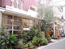 店の外観・右手にオリーブの木が見える