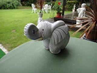 クラッシク【アフリカ象】