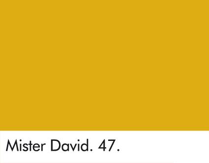 Mister David 47.