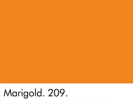 Marigold 209.