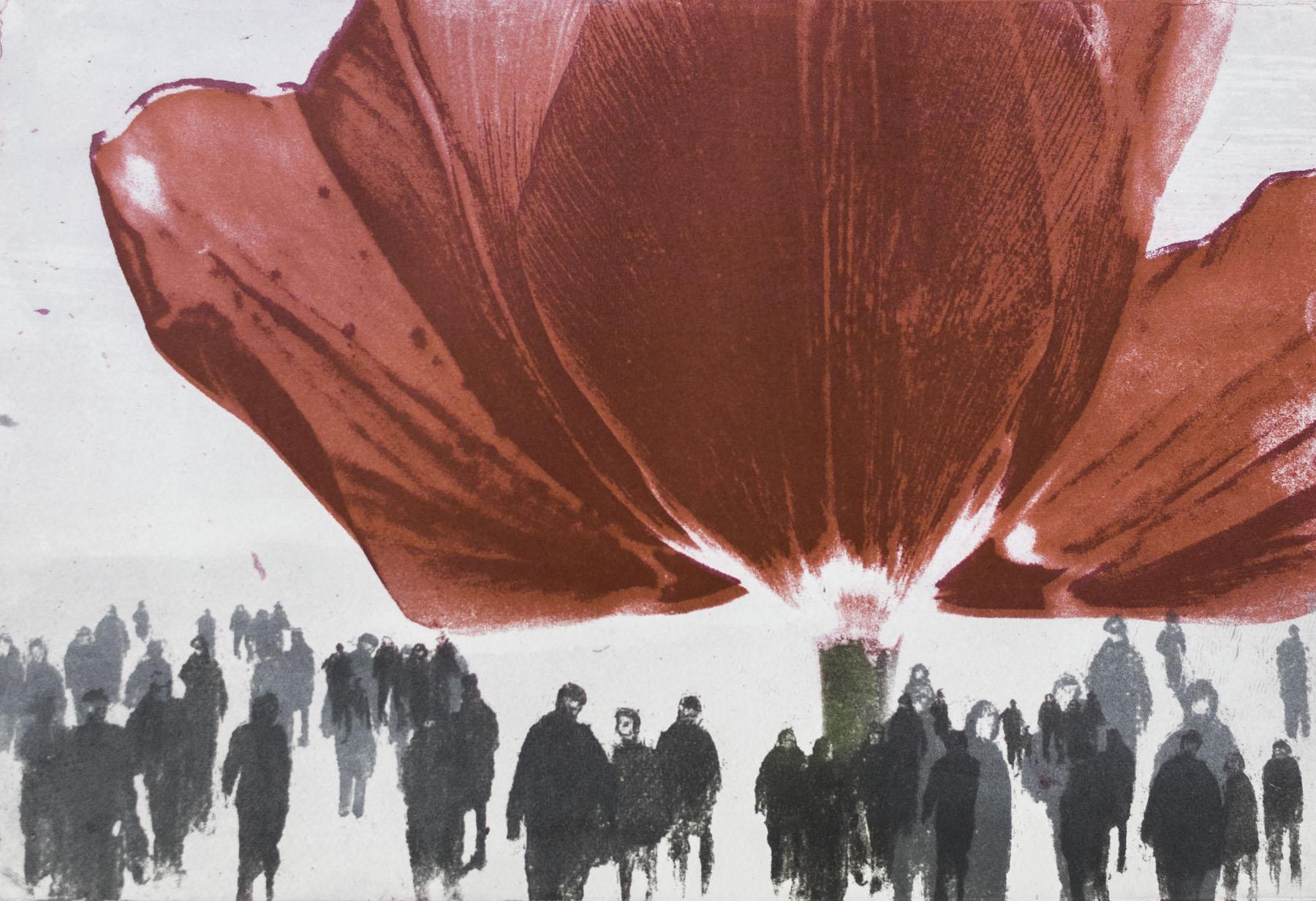 "Intagliotypie/Radierung, 20x30 cm. ""Rote Tulpe"""