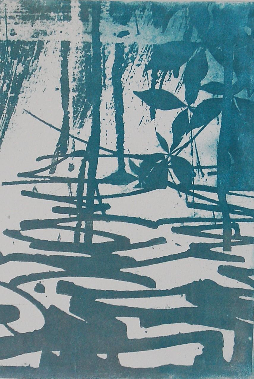 Intagliotypie, 20x30 cm, Natur und Technik